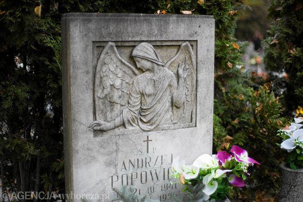 Zdjęcie numer 74 w galerii - Wszystkich Świętych we Wrocławiu. Cmentarze w kwiatach [ZDJĘCIA]