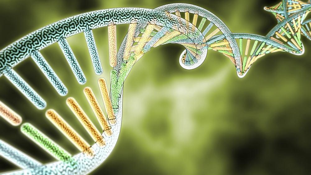 Acyduria mewalonianowa (kwasica mewalonianowa) to jedna z tzw. chorób metabolicznych.