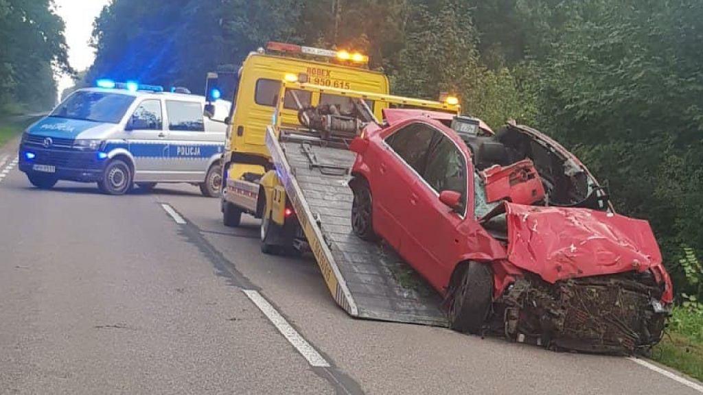 Wypadek pod Ciechanowem, samochód zderzył się z łosiem
