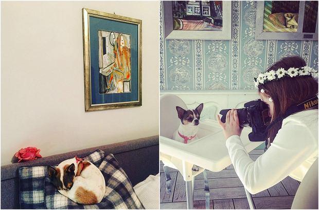 Zdjęcie numer 2 w galerii - Marta Kaczyńska pokazała sopockie mieszkanie swoich rodziców. Wnętrza w starym stylu robią wrażenie