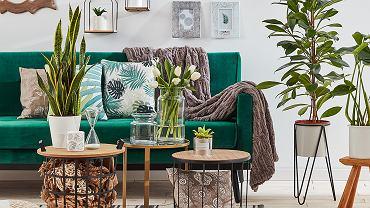 Poduszki dekoracyjne w roślinne wzory