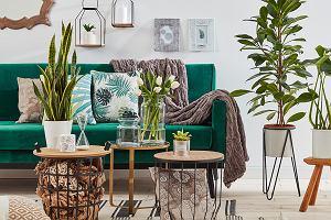 Poduszki dekoracyjne - jaki wzór wybrać?