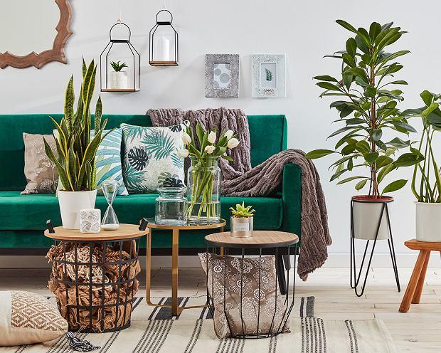 Ikea Poduszki Dekoracyjne Wnętrzaaranżacje Wnętrz