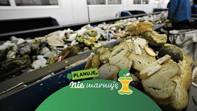 Niszczymy planetę dla jedzenia, którego nigdy nie zjadamy. A najwięcej marnujemy w domach