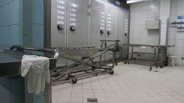 Łódź. W Zakładzie Medycyny Sądowej strzelano do zwłok / Zdjęcie ilustracyjne