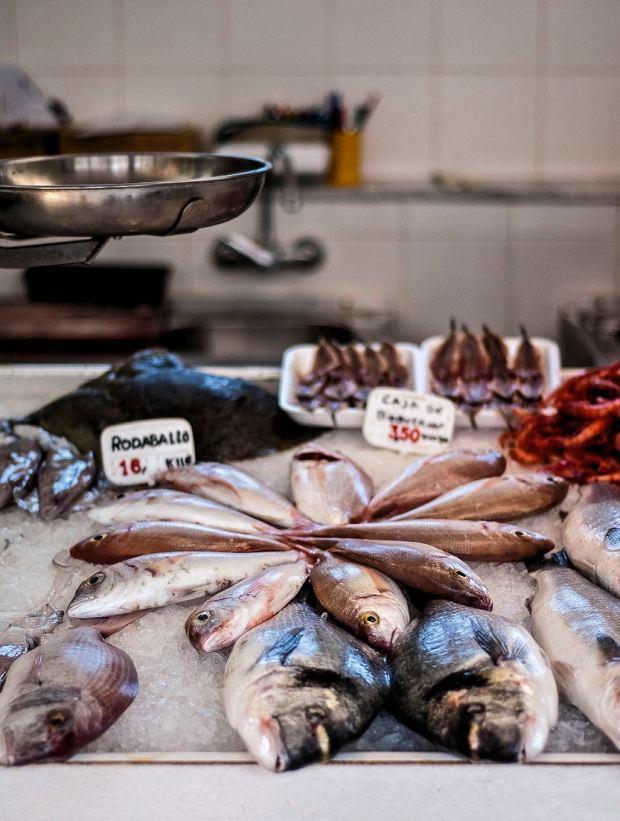 Minorka, Ciutadella - targ rybny,