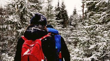 Zimowe wycieczki w polskich górach