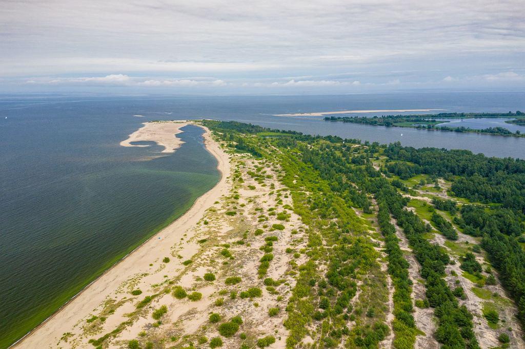 Dzikie miejsca w Polsce. Ujście Wisły