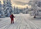 Polska zimą. Najpiękniejsze trasy na biegówki