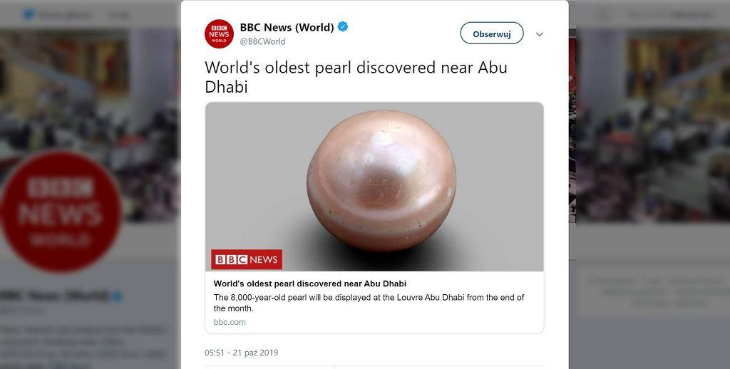 Najstarsza perła na świcie odkryta została w Zjednoczonych Emiratach Arabskich.