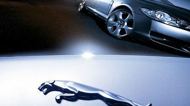 Logo z klasą: historia Jaguara