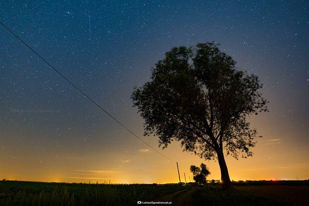 Zdjęcie spadających gwiazd pod Poznaniem podbija świat. Zrobił je nasz fotoedytor