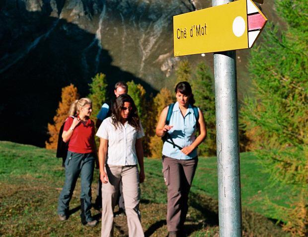Szlaki wędrówkowe mają żółte tablice-kierunkowskazy i żółte oznaczenia