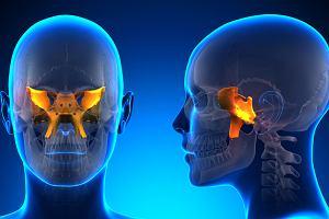 Kość klinowa - gdzie się znajduje, jakie pełni funkcje, co może oznaczać jej ból?