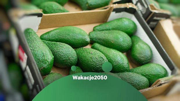 #WAKACJE2050: Lato skłania do lekkiej diety, ale środowisko lekko nie ma. Zbiory awokado i kokosów mocno je obciążają