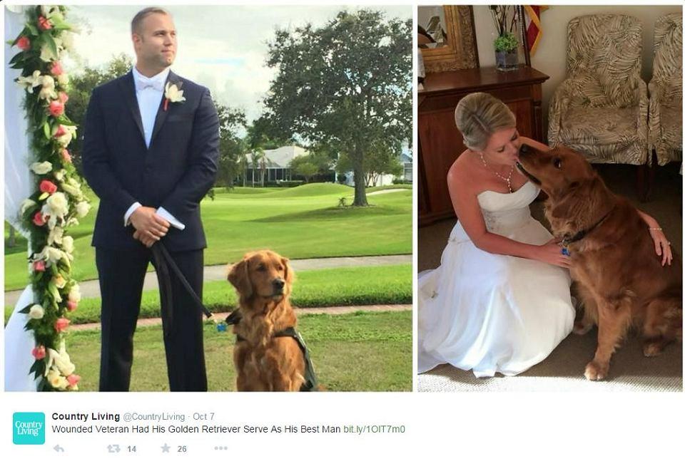 Justin Lansford, weteran wojny w Afganistanie, jego przyjaciel, pies-przewodnik Gabe, oraz żona żołnierza Carol w dniu ślubu