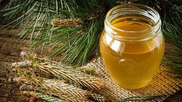 Syrop z sosny jest to naturalny lek na przeziębienie oraz inne dolegliwości związane z chorobami gardła