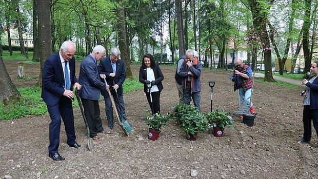 Krosno. Rododendrony od niemieckiego partnera zasadzono w miejscu straceń Polaków. Nietakt czy piękna inicjatywa?