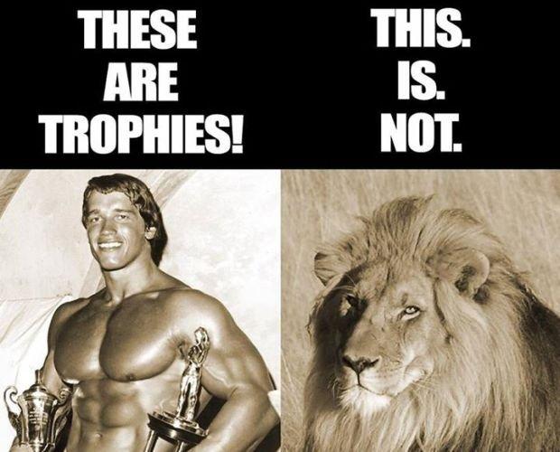 Zdjęcie wrzucone na oficjalny profil Schwarzeneggera