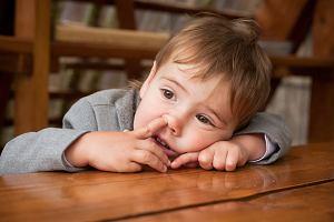 """Mukofagia - co robić, gdy dziecko je """"kozy z nosa"""""""