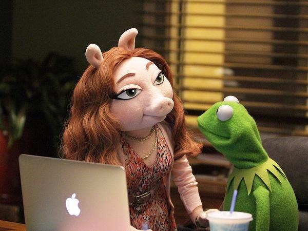 Kermit i jego nowa dziewczyna