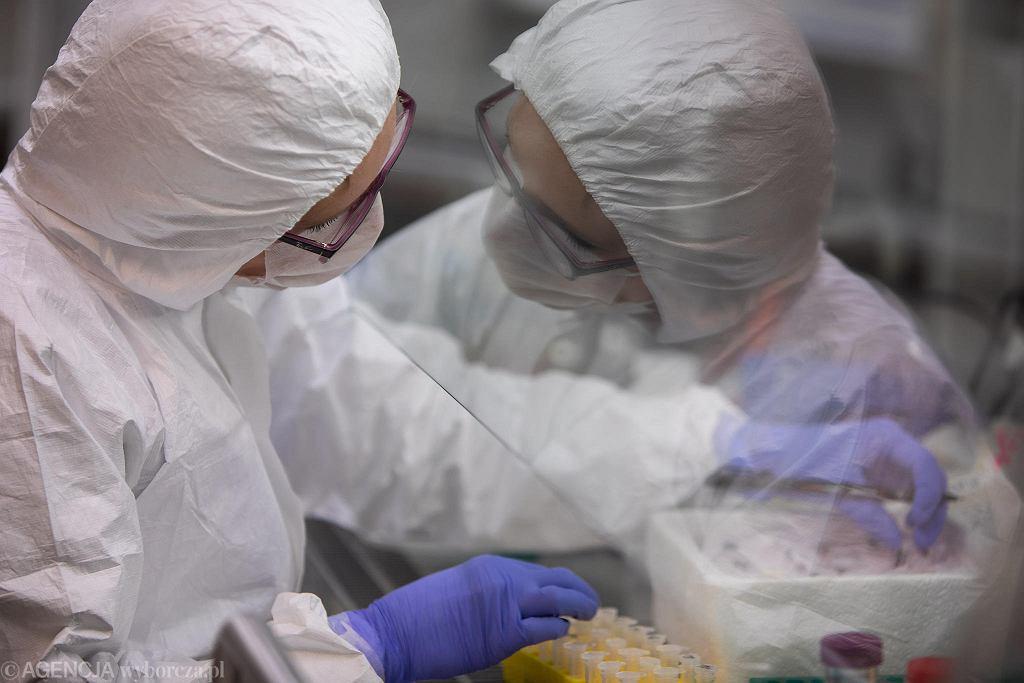 Badanie próbek wymazów pobranych od osób z podejrzeniem koronawirusa