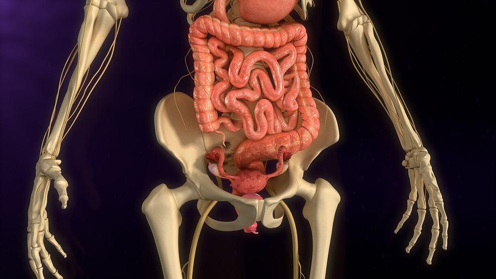 Polipy endometrialne występują najczęściej w wieku pomiędzy trzydziestym a pięćdziesiątym rokiem życia