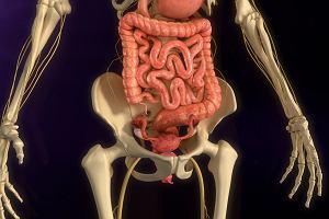 Polip endometrialny - czym jest, jak się go diagnozuje i leczy?