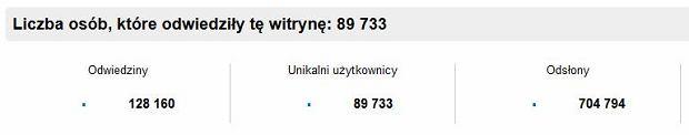 Statystyki Strims.pl
