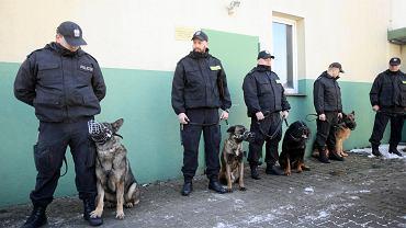 Pożegnanie psa policyjnego Brutusa