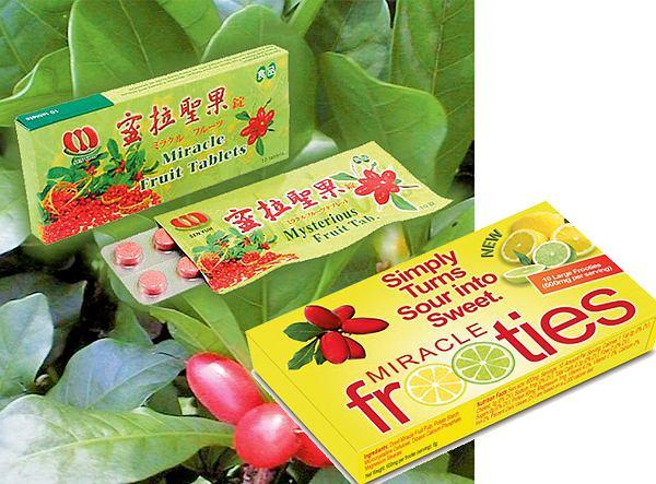 Miracle Berry Fruit Tablets to pastylki na bazie synsepalu zminiające smak potrawy na słodki