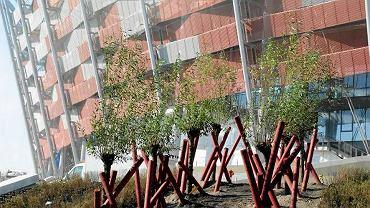 Zieleń wokół Stadionu Narodowego