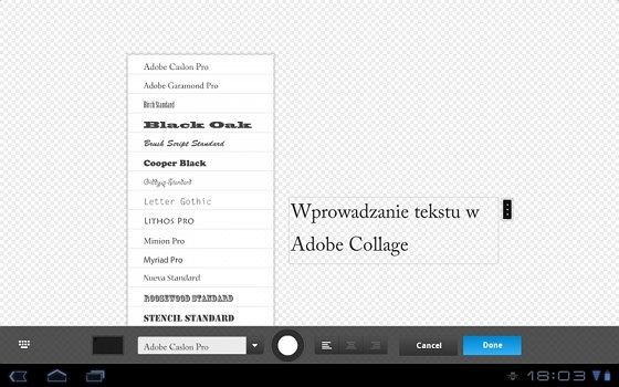 Adobe Collage - dodawanie tekstu