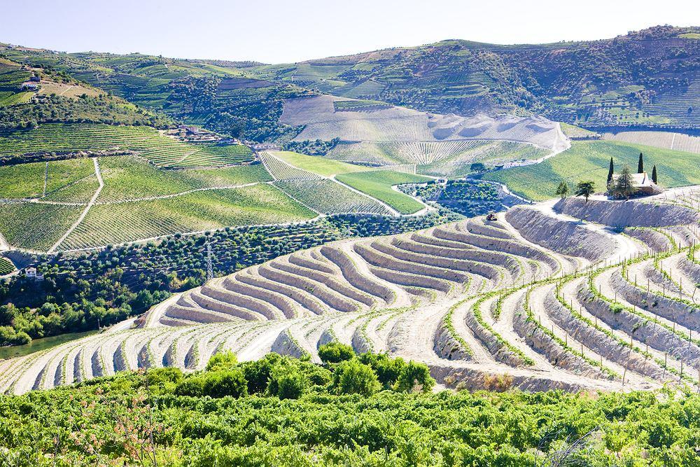 Portugalia wino, Dolina Duero
