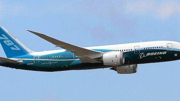 Podróże samolotem są uciążliwe dla wysokich siatkarzy