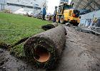 Stadiony na Euro 2012. Trawa w Poznaniu będzie wymieniona tuż przed Euro