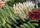 Czy dieta wegańska i wegetariańska mają wady? Badania naukowe wskazują na kilka zagrożeń