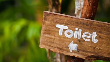 toaleta, znak, wskazówka