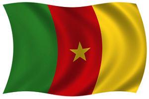 Kamerun - flaga