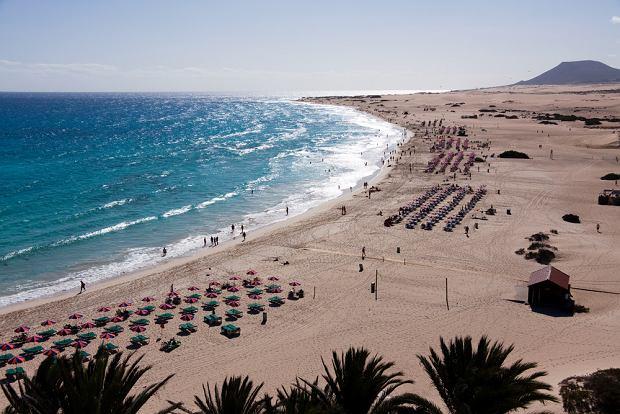 Fuerteventura, plaża, wyspy kanaryjskie