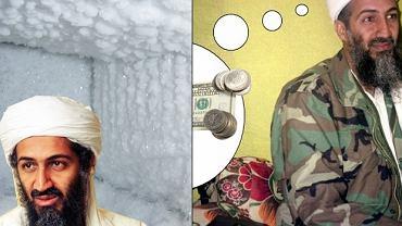 Wiele teorii na temat Osamy.