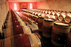 Szybki kurs degustacji wina