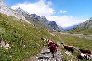 Trekking w Europie. Tour de Mont Blanc - wokół Białej Góry