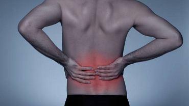 Ból kręgosłupa może bardzo uprzykrzyć życie. Aby złagodzić dolegliwości warto zrezygnować z wizyty u kręgarza i wybrać się do profesjonalnego masażysty