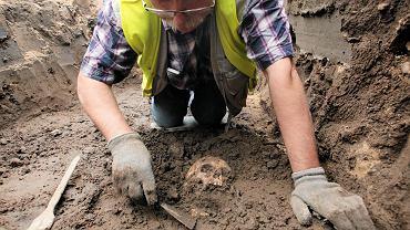 Badania odkrytych  podczas wykopów w Santoku wczesnośredniowiecznych pochówków