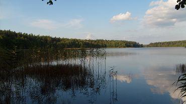 Omulew / fot. Rydz nni CC BY SA Flickr.com