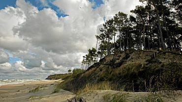Bałtyckie wybrzeże - zdjęcie ilustracyjne