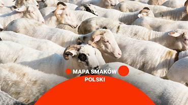 Niezależnie od tego, czy byliście w polskich Tatrach, czy nie - chyba każdy wie, że region ten słynie z wyjątkowej jagnięciny.