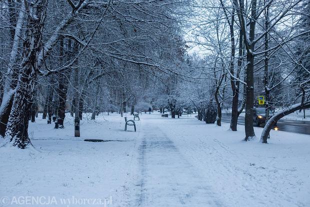 Zdjęcie numer 26 w galerii - Zima w Krakowie - śnieg przykrył ulice, domy, parki [GALERIA]
