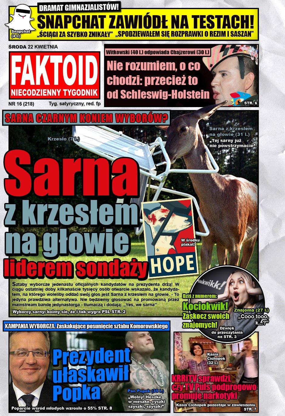 Faktoid: Sarna z krzesłem na głowie liderem sondaży - Szok! Sarna z krzesłem na głowie liderem sondaży - Gazeta.pl